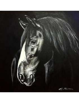BLACK HORSE ON DARK BACKGROUND